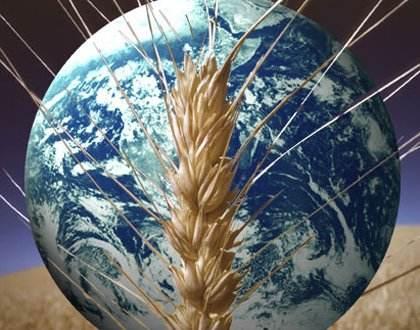 非洲粮食安全再拉警报