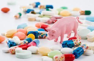 研究:断奶仔猪是否需要饲用抗生素?