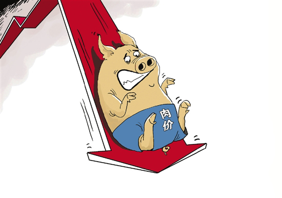 专家表示今年猪价进一步下跌概率较大