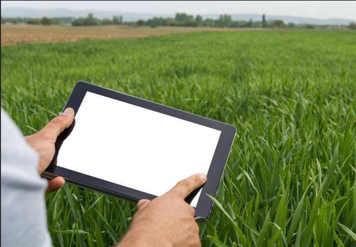 现代农业作物保护的强大工具:数据