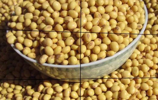 我国同意增购美农产品