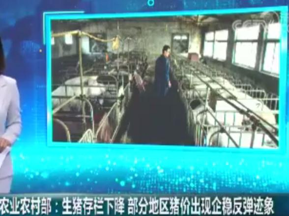 农业农村部:生猪存栏下降 部分地区猪价出现企稳反弹迹象