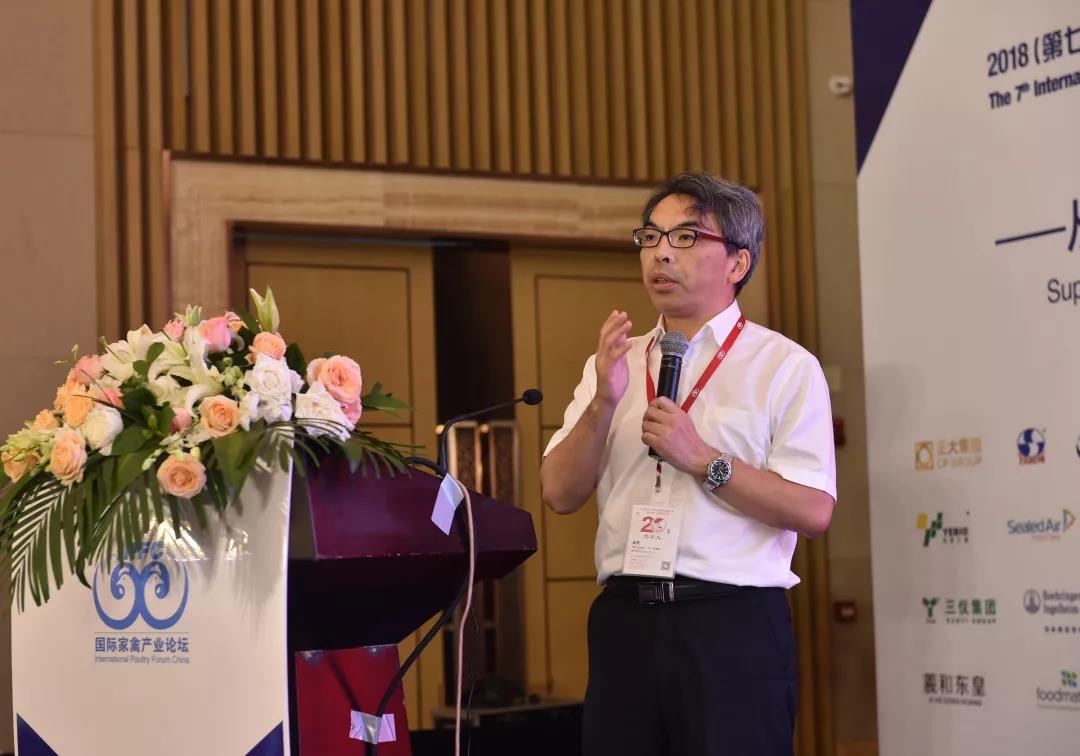 世界家禽学会主席杨宁:家禽业的核心将是保持高效优势