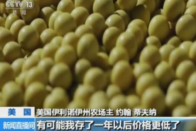 美国大豆农:担心一旦失去中国市场 他们便不再回来