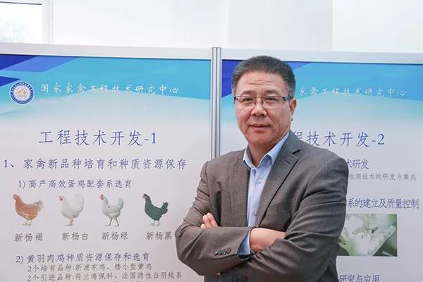 """科技是第一生产力,人才是第一资源 ——""""中国蛋鸡10年""""杨长锁专访"""