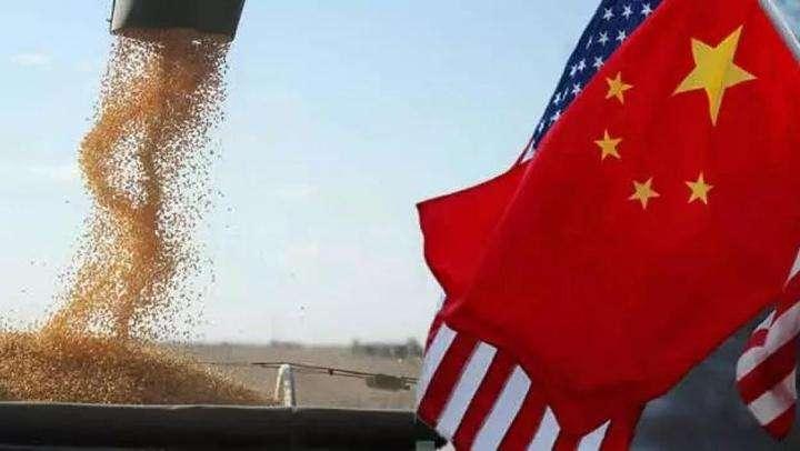 美农业部:中国大豆进口量今年或跌至8800万吨