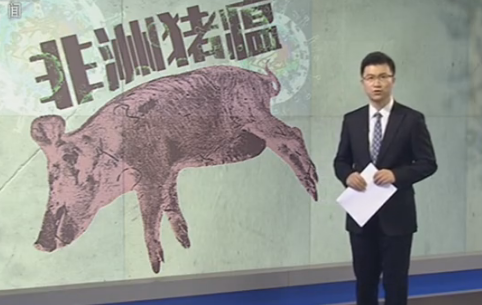 河北保定徐水区发生非洲猪瘟疫情