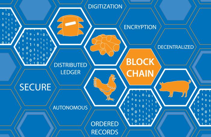 区块链技术可追溯禽肉的安全和起源