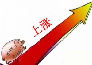 生猪存栏创1992年以来最低水平