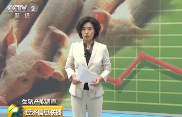 非洲猪瘟总体可控 河南养猪户复养意愿提升