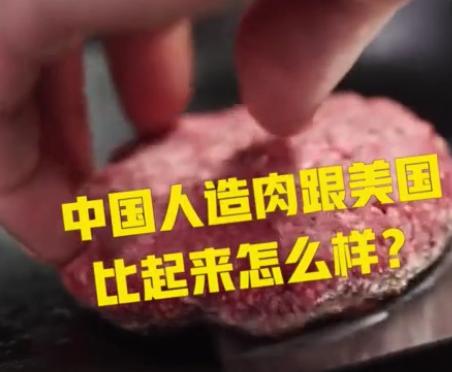 中国首款人造肉9月上市