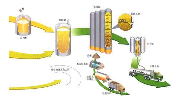 """""""烧掉""""近半玉米 美国把燃料乙醇做成世界第一"""