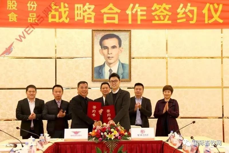 温氏禽肉调理品供应链发力 与紫燕签下8亿元肉鸡订单