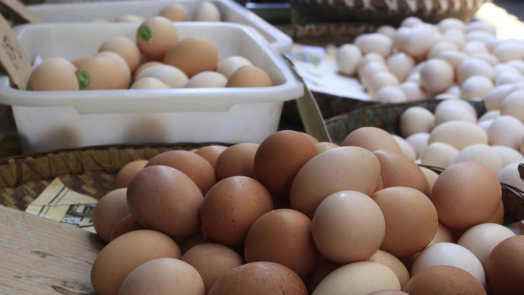 鸡蛋价格半年降近三成的原因
