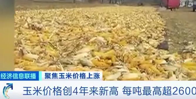 玉米价格创近4年新高,玉米加工下游产品涨价