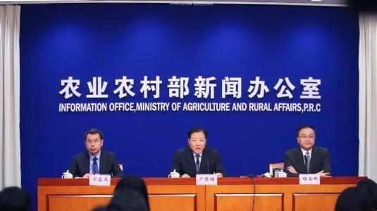 农业农村部:元旦春节期间猪肉价格或上涨