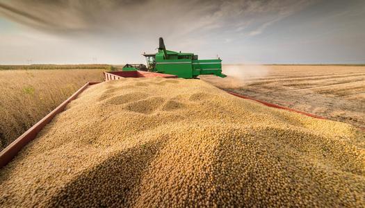 巴西2020—2021年度大豆播种完成74.1%