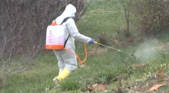 山西平陆发生野生天鹅H5N8禽流感疫情