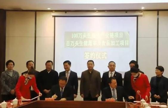 正大集团加大农牧投资!又在咸宁建设100万头生猪全产业链项目