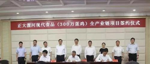 正大漯河现代食品(300万蛋鸡)全产业链项目正式签约 落户漯河市召陵区